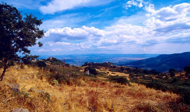 Punta monte Rasu - Bottidda