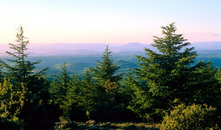 Veduta della valle dei nuraghi