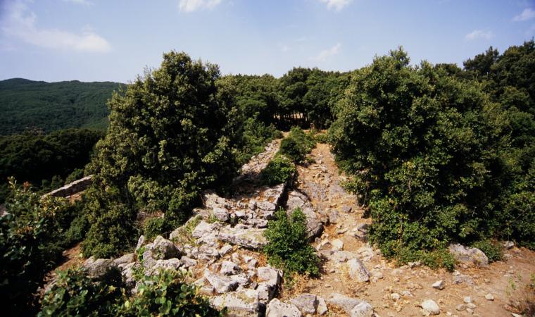 Rovine di san Giorgio - Anela