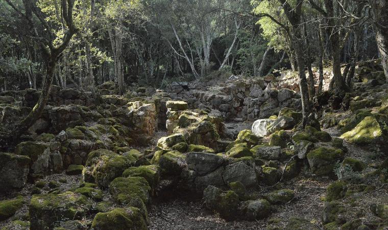 Scorcio del villaggio Brunk'e s'Omu - Villa Verde
