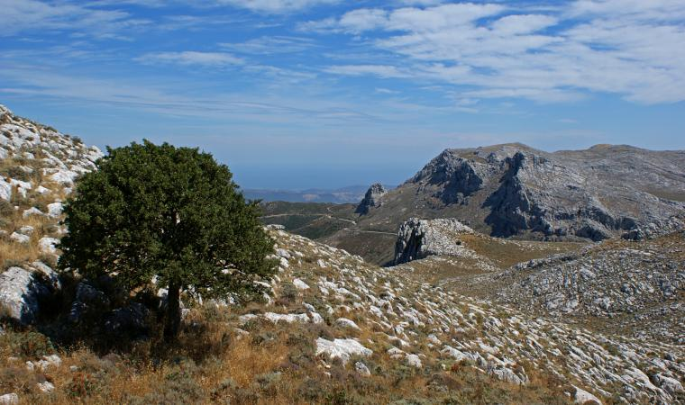 Monte Albo - Lula