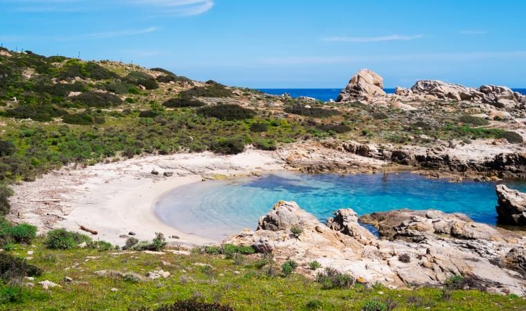 Cala Sabina - Asinara
