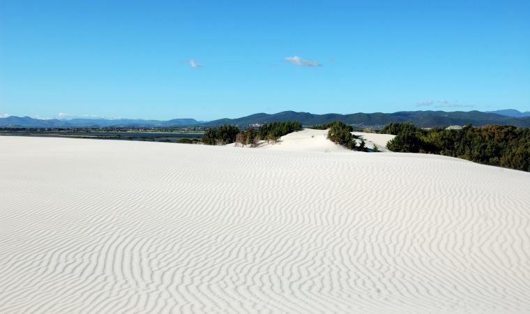 Porto Pino, dune