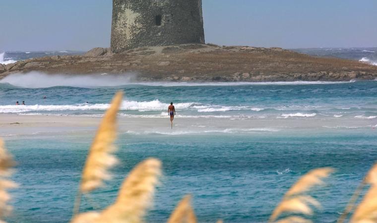 Spiaggia La Pelosa - torre - Stintino