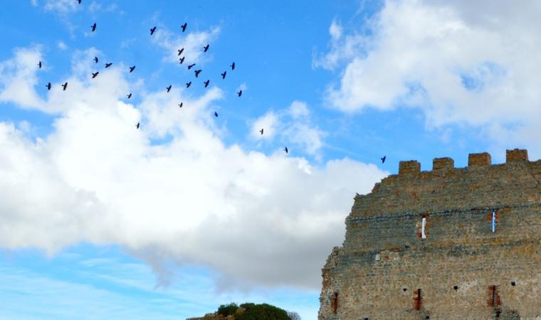 Castello Acquafredda - Siliqua