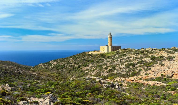 Faro - Isola San Pietro
