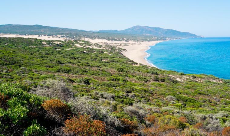 Spiaggia di Piscinas, panoramica - Costa Verde
