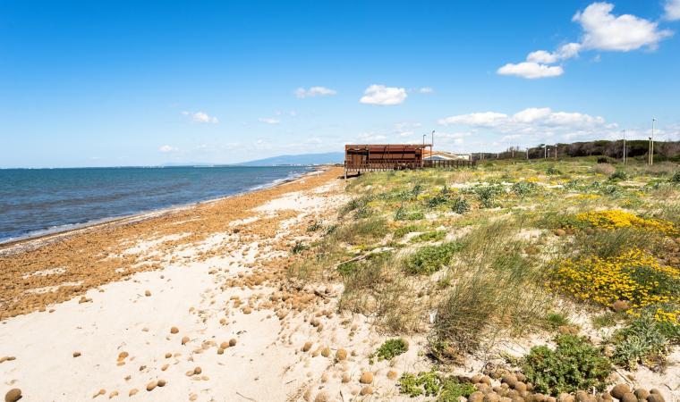 Marina di Arborea - Arborea