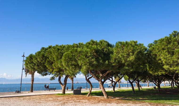 Lungomare Su Siccu - Cagliari