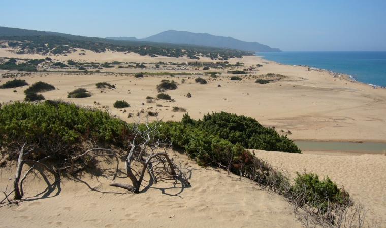 Spiaggia di Piscinas, particolare dune  - Costa Verde