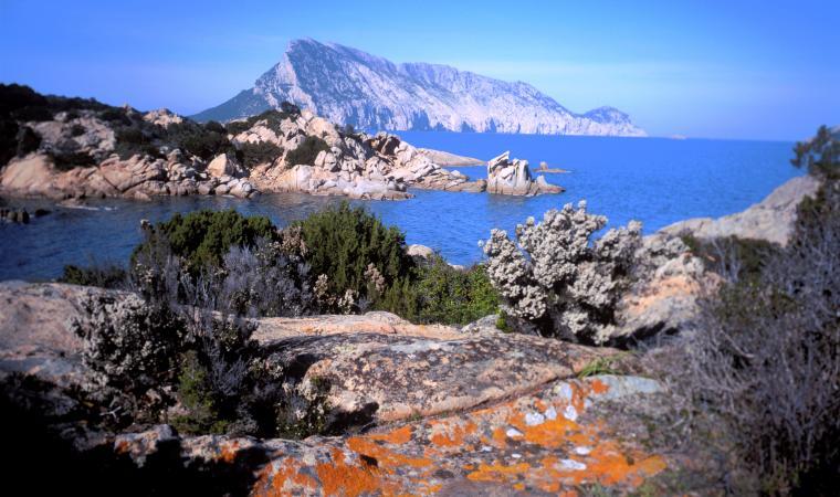 Isola di Tavolara - San Teodoro