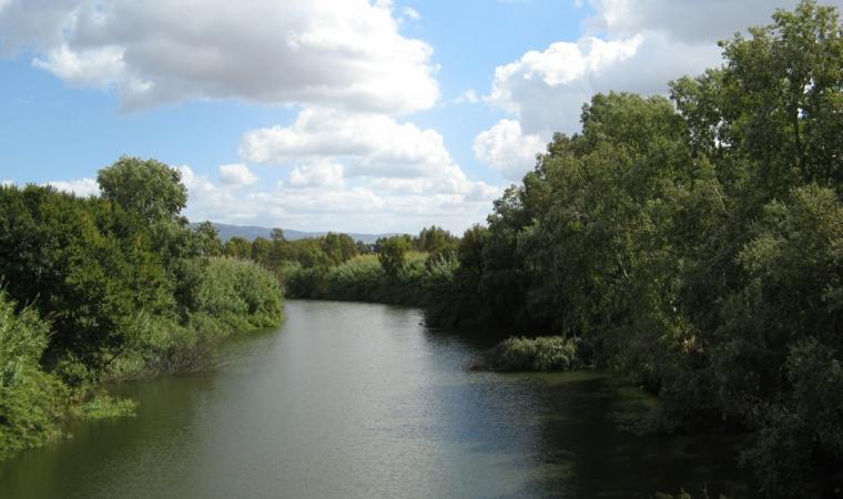 Veduta del fiume Tirso - Simaxis