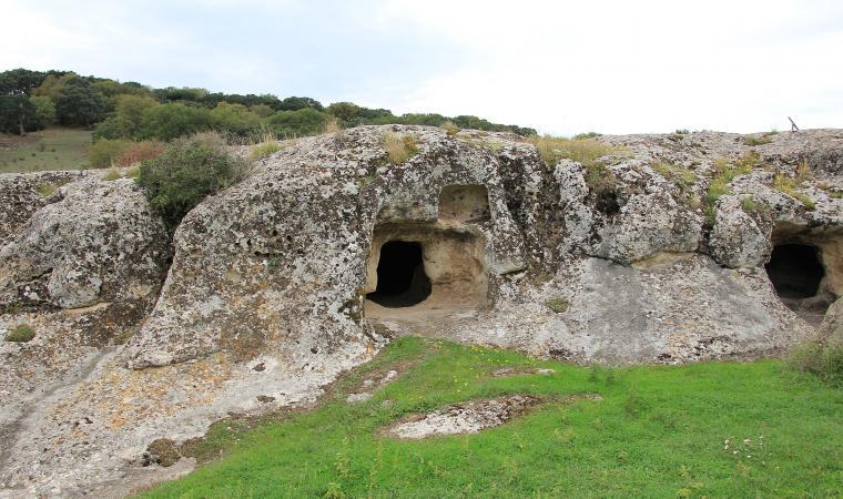 Necropoli di Puttu Codinu - Villanova Monteleone