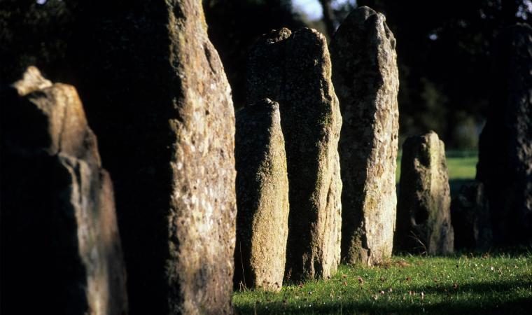 Menhir di Pranu Muttedu - Goni