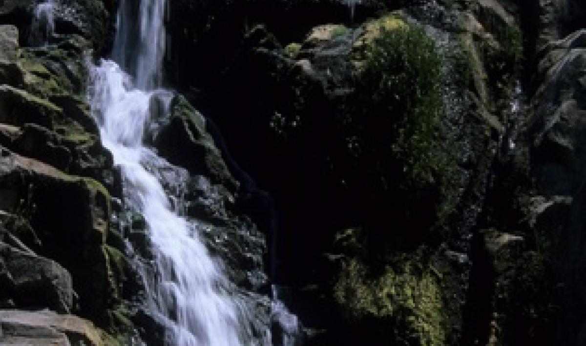 Titolo: cascata del Rio Triulintas Autore: Manunza Bruno