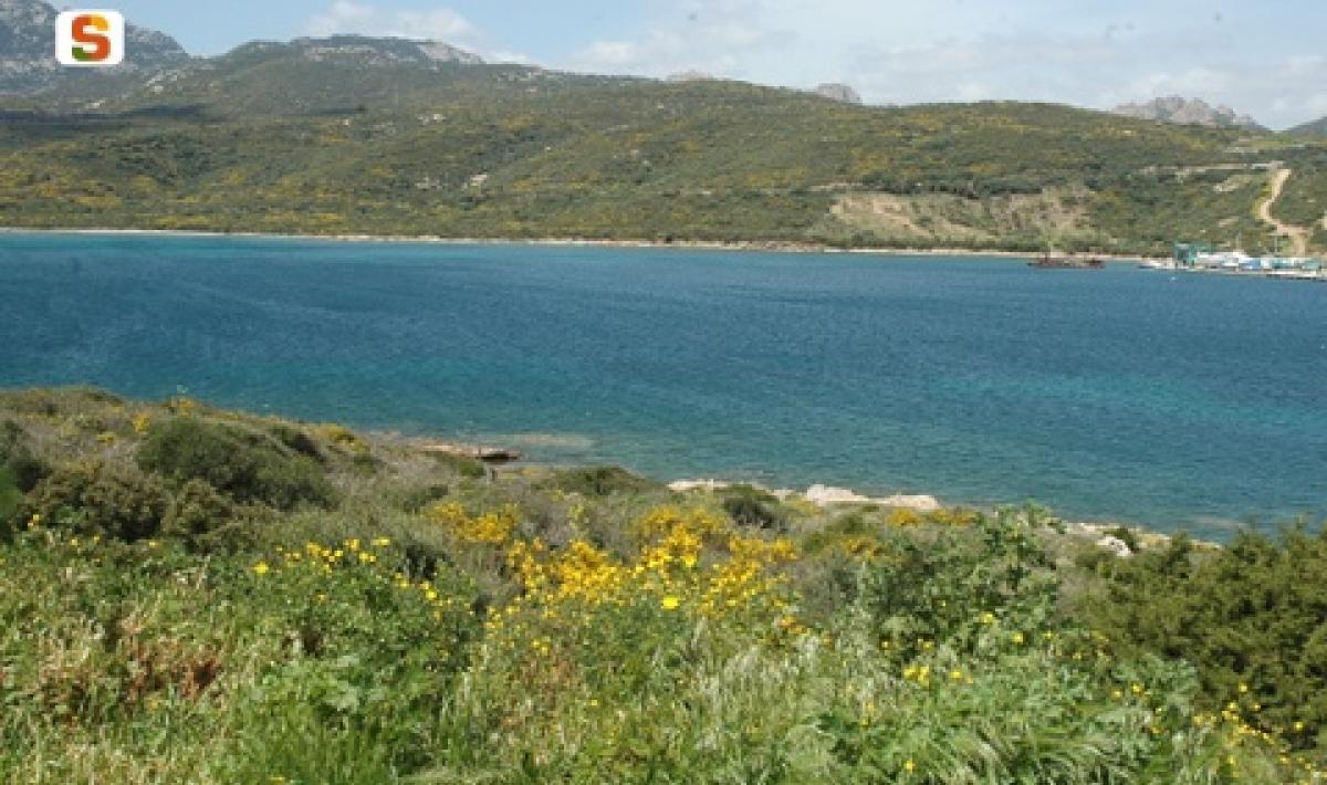 Titel: Olbia, Golfo di Cugnana (Olbia Tempio)