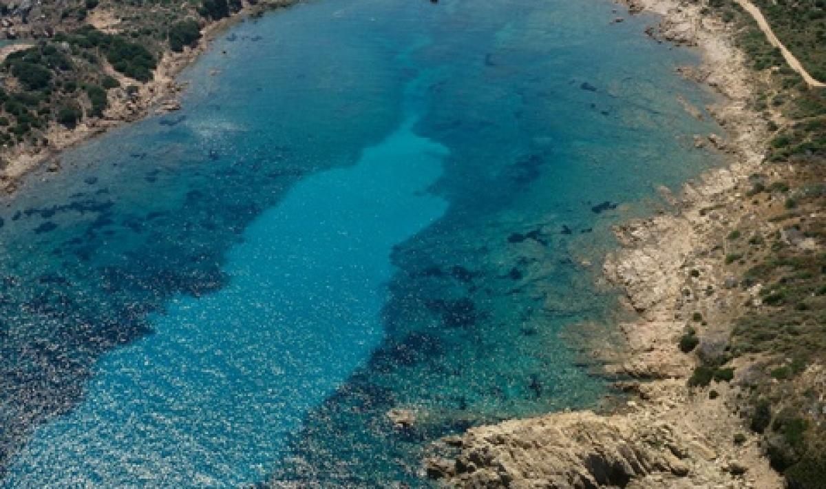 Punta Liccia