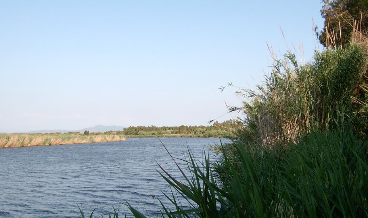 Riu Mare Foghe - Baratili
