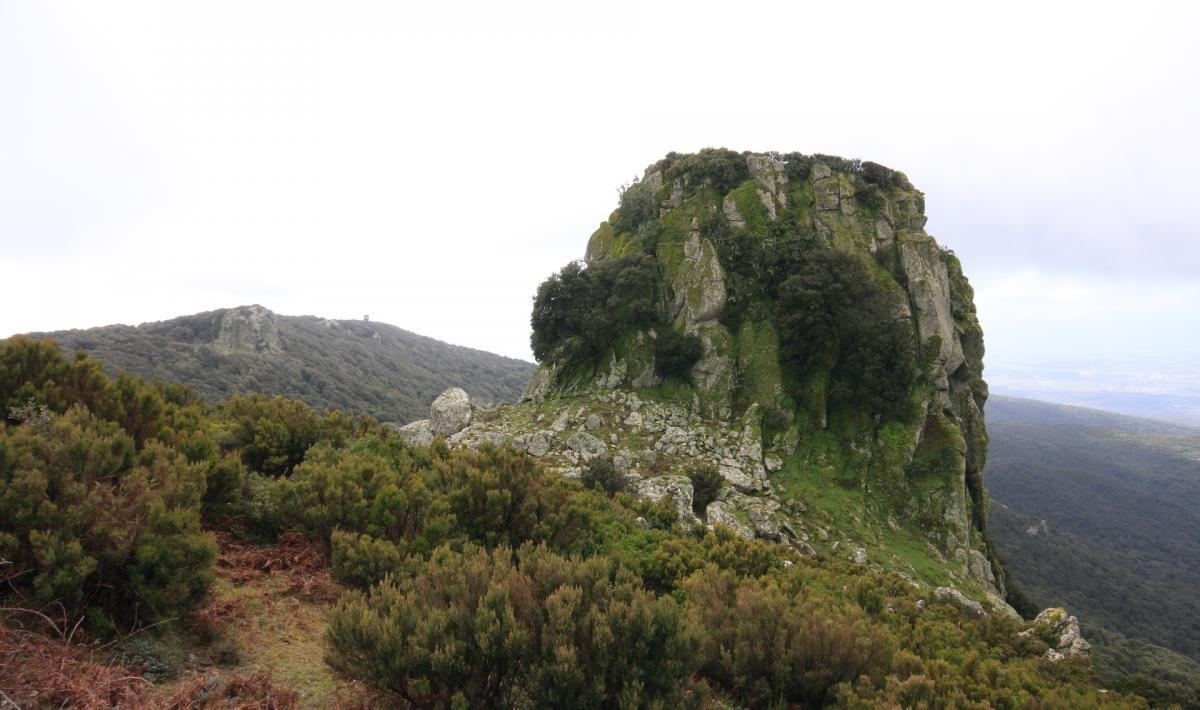 Trebina Longa. monte Arci