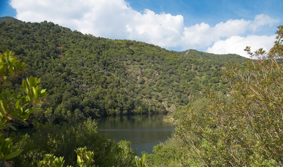 Gutturu Mannu, Parco Regionale
