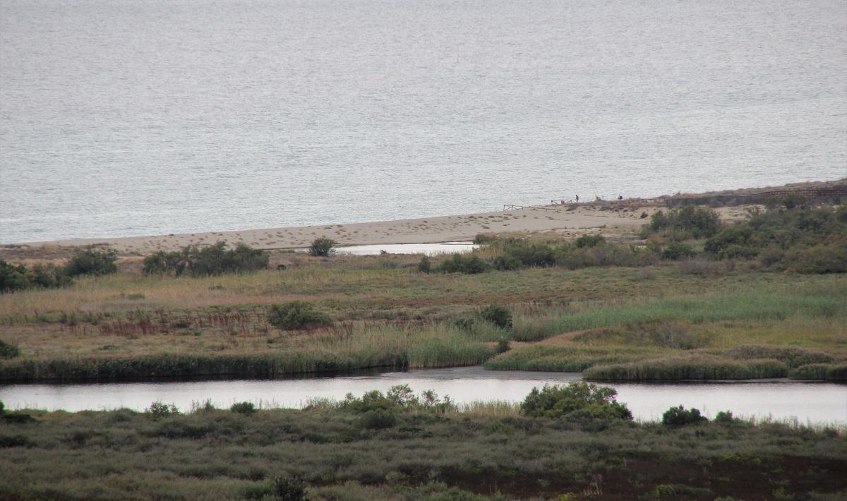 Spiaggia di su Tiriarzu - Posada
