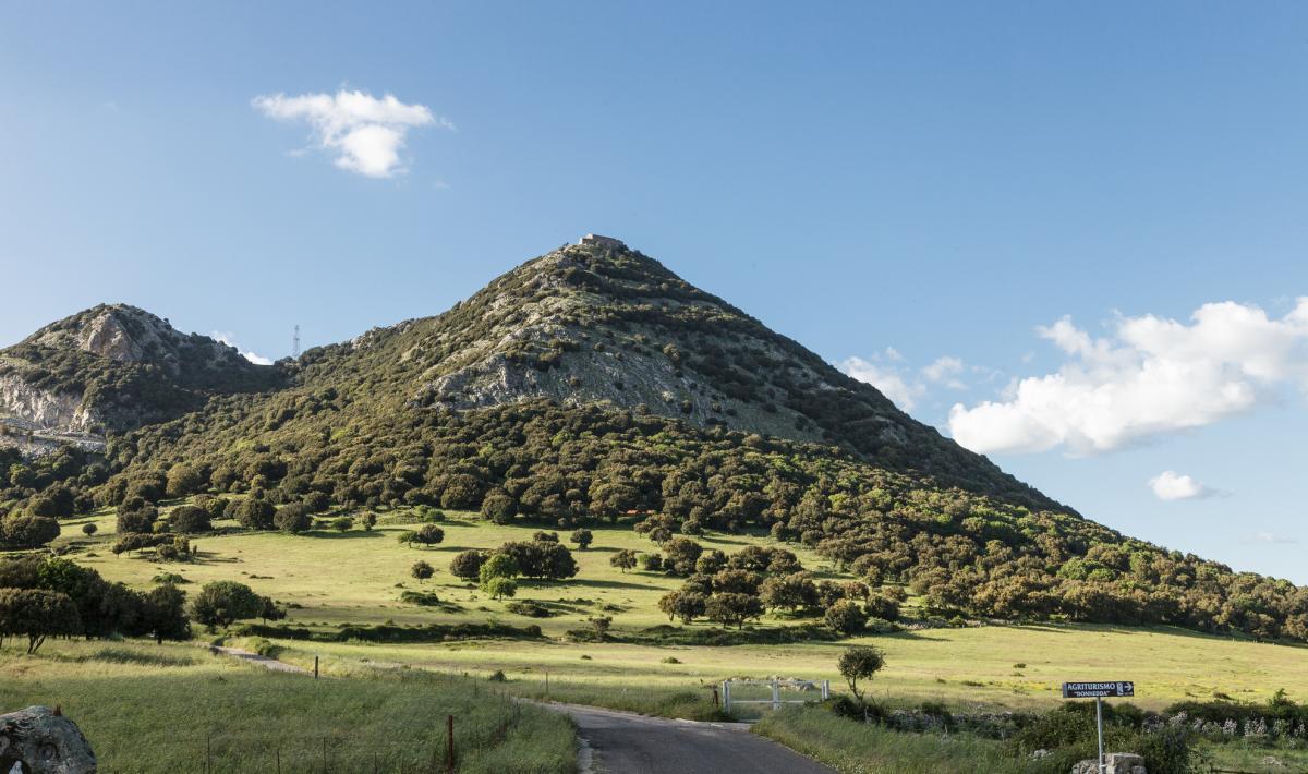 Monte Gonare - Sa
