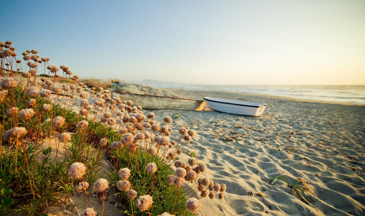 Badesi Alba in spiaggia