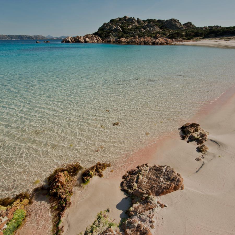 Spiaggia rosa - Isola di Budelli