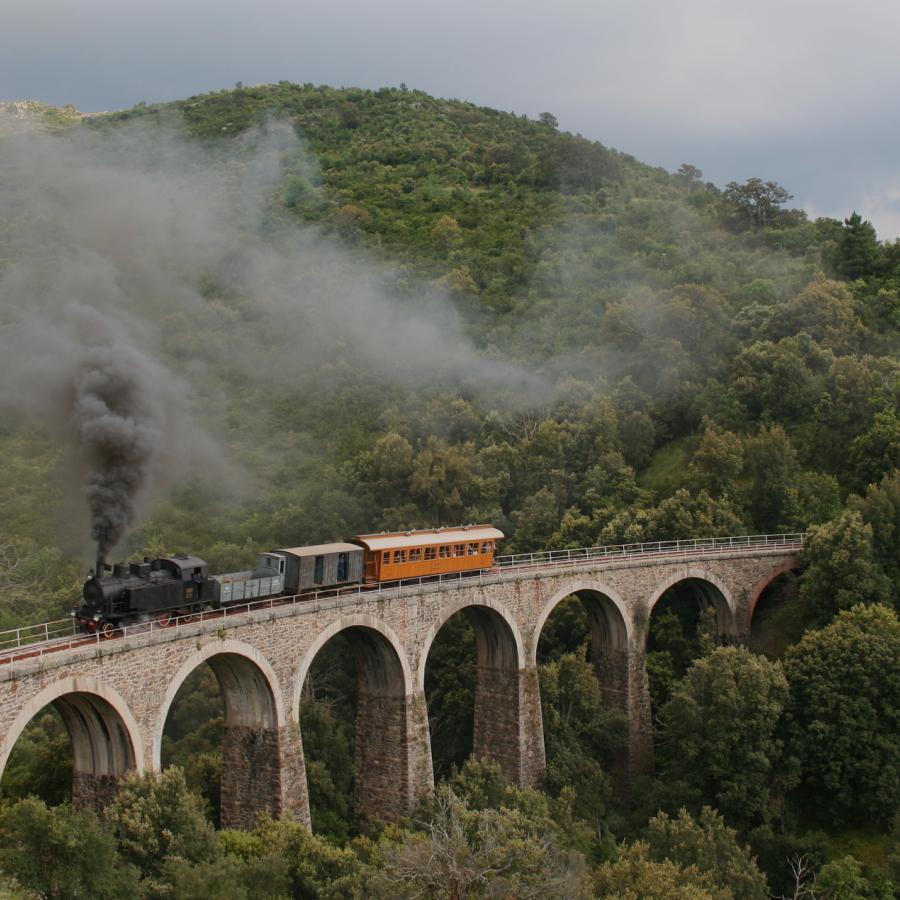 Trenino verde tra desulo e tonara